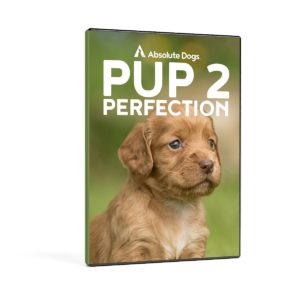 Pup 2 Perfection 2 set DVD