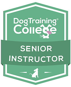 Dog Training College Senior Instructor