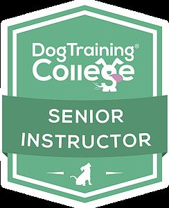 Dog Training College Senior Instructor