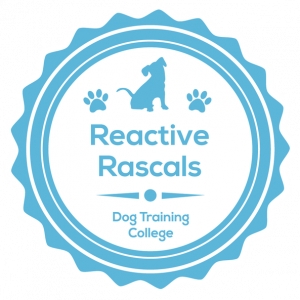 Reactive Rascals December 13th 10am (GMT)