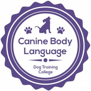 Canine Body Language Workshop January 31st 10am (GMT)