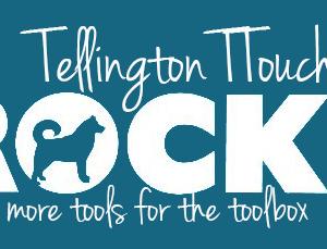 Tellington TTouch Rocks October 31st