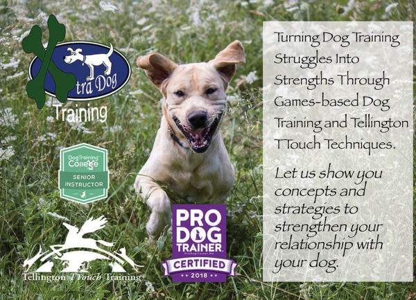 Kick Starter Training Package from Xtra Dog Training