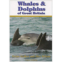 Whales and Dolphins of Great Britain book by Dylan Walker and Alex Wilson