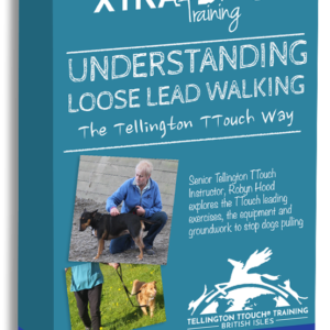 Loose Lead Walking Seminar