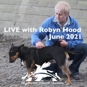 Interactive and Online Tellington TTouch for dogs Level One with Robyn Hood June 5-6 20-21 June