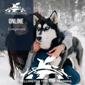 Tellington TTouch Online Component – Practitioner Credits