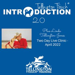 Tellington TTouch Mega Mega Package