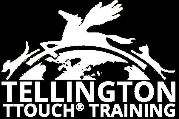 logo21-white