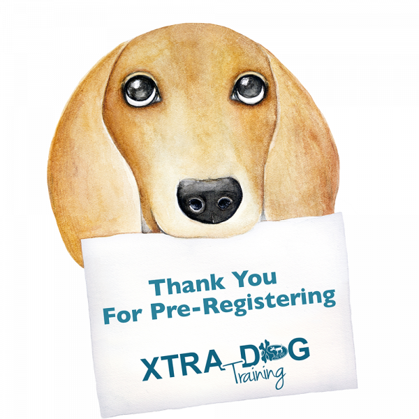 thank you for pre-registering2