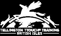 ttouch logo-keylines